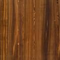 Nørdus fineerband Autumn Larch product photo